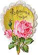bouquetf8.jpg