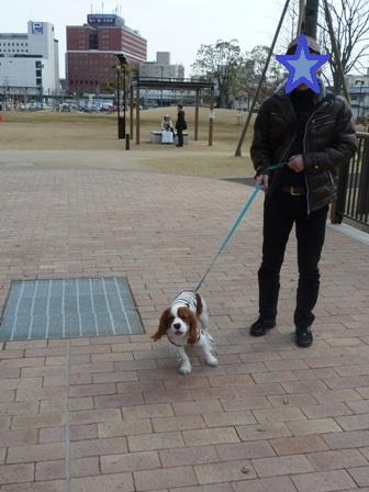 三井アウトレットの公園