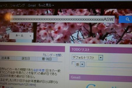 DSC_0014 (5)