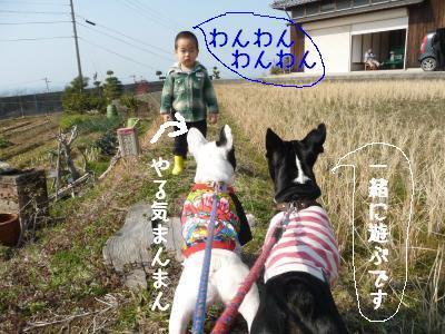 P1060713_convert_20100219204706.jpg