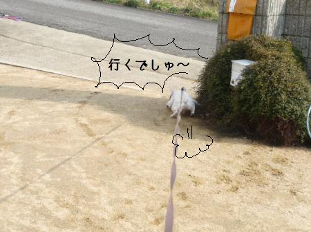 P1070081_convert_20100316221915.jpg