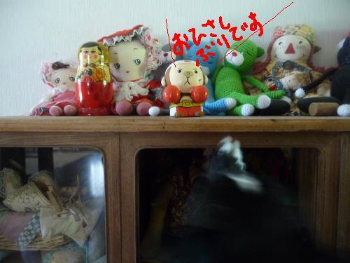 P1090452_convert_20100819211817.jpg