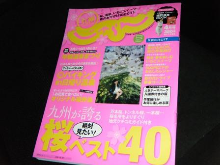 2010_0317ブログ0001