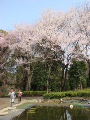 1智光山公園③