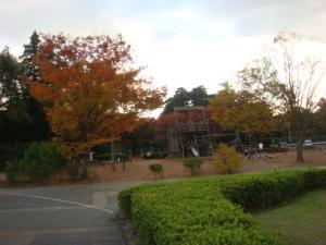1.紅葉⑥