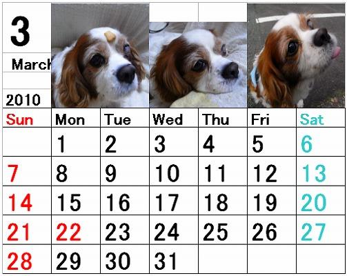 ブルポカレンダー3月