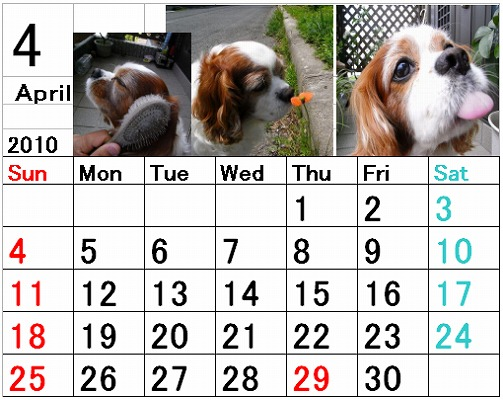 ブルポカレンダー4月