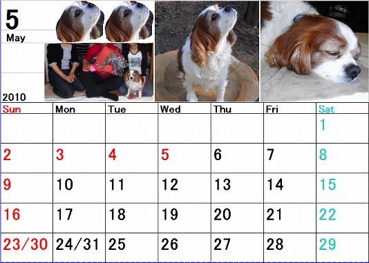 ブルポカレンダー5月