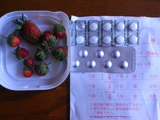 おやつイチゴとお薬