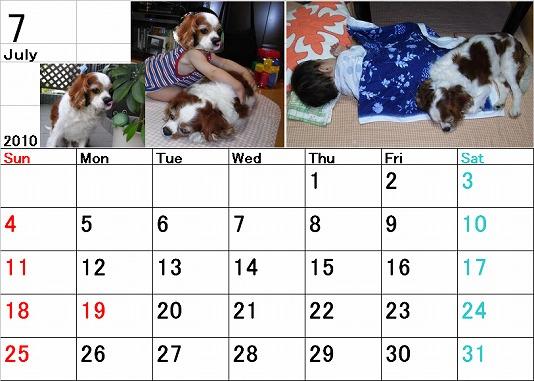 ブルポカレンダー7月