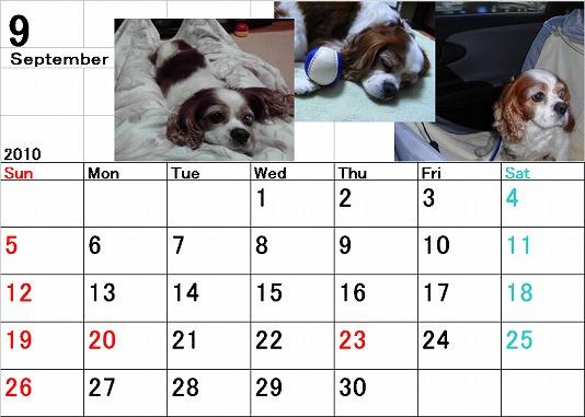 ブルポカレンダー9月