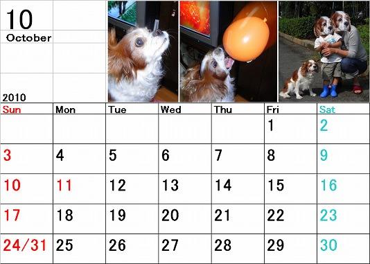 ブルポカレンダー10月