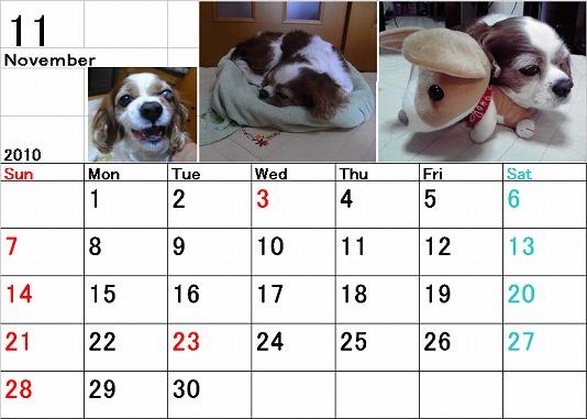 ブルポカレンダー11月