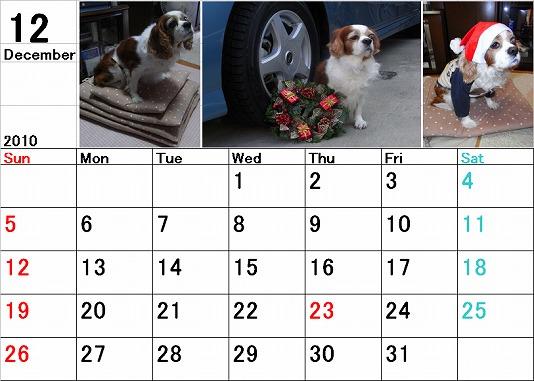 ブルポカレンダー12月