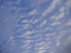9いわし雲
