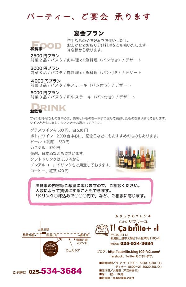 partyplan2013w.jpg