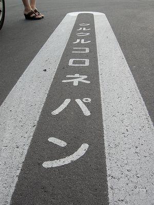 2010_0606_164801-DSCN4253.jpg