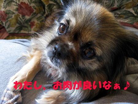 IMG_4497.jpg
