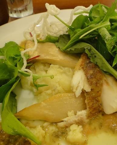 nomu 魚プレート