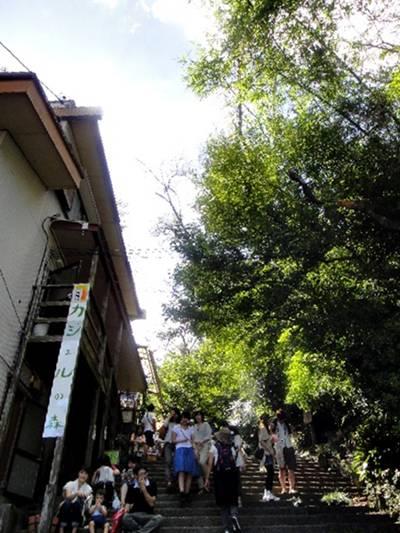 森道市場 階段