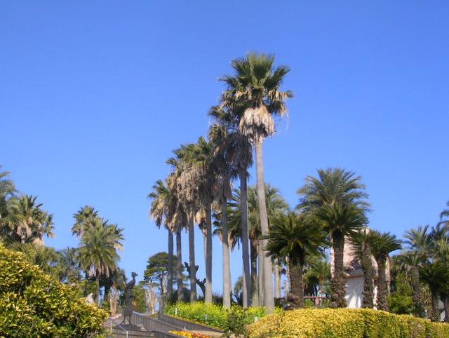 長島美術館の庭園