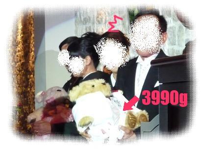 P1080067.jpg