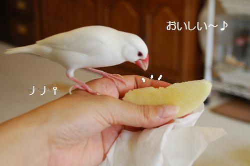 ナナリンゴ
