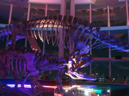 世界最古の恐竜展