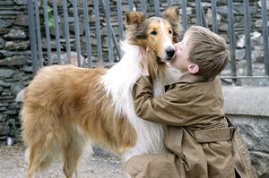 lassie02 (1)