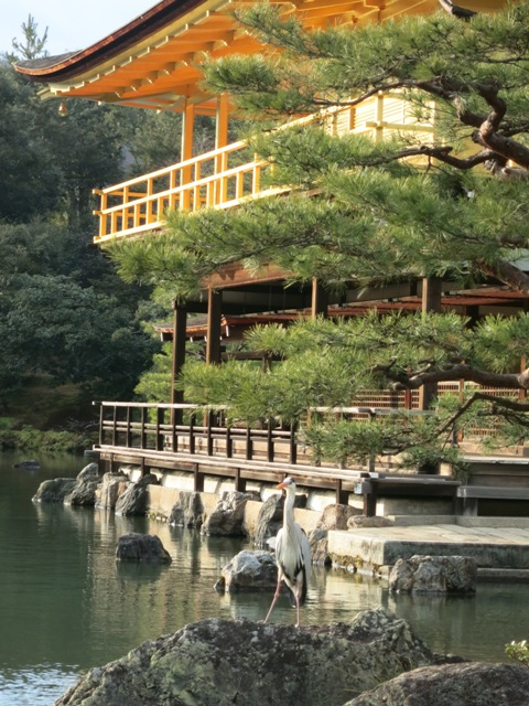 kyoto137.jpg