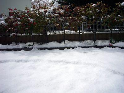 まさかの積雪⑥