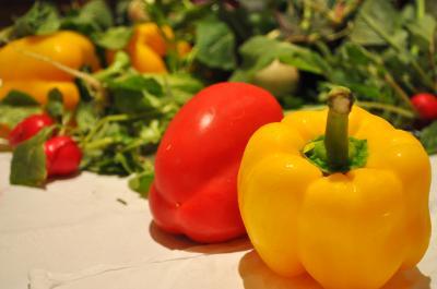 野菜レフ4