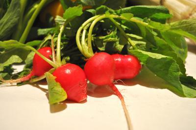 野菜レフ3