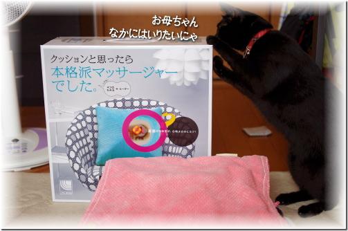 jiji2010-52-2.jpg