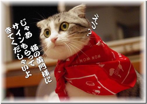 猫黄門はファンでしゅよ!