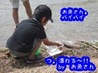 DSCF4630_convert_20110802154801.jpg