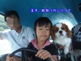 DSCF4703_convert_20110802155614.jpg