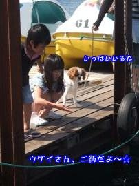 DSCF4725_convert_20110802155812.jpg