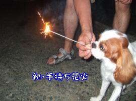 DSCF4935_convert_20110819153207.jpg