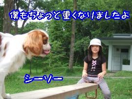 DSCF5083_convert_20110819161231.jpg