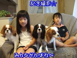DSCF5424_convert_20110828091332.jpg