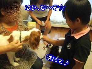 DSCF5431_convert_20110828091409.jpg