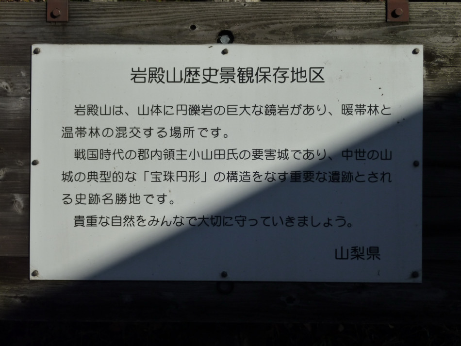 iwadono-065.jpg