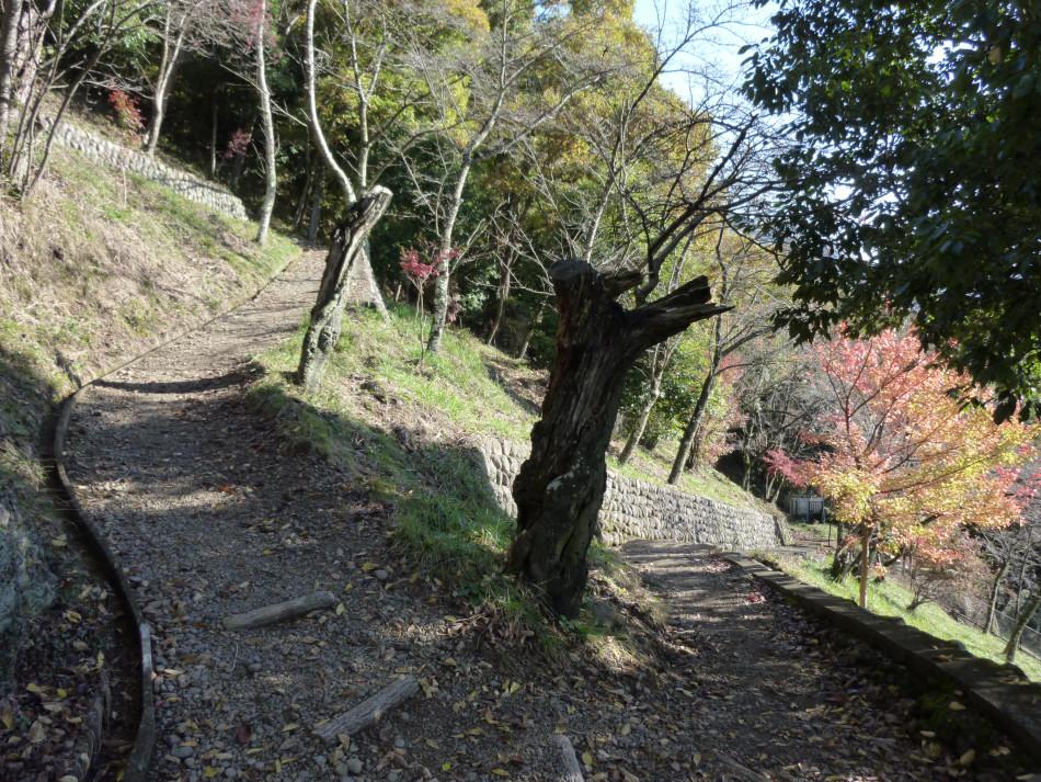 iwadono-084.jpg