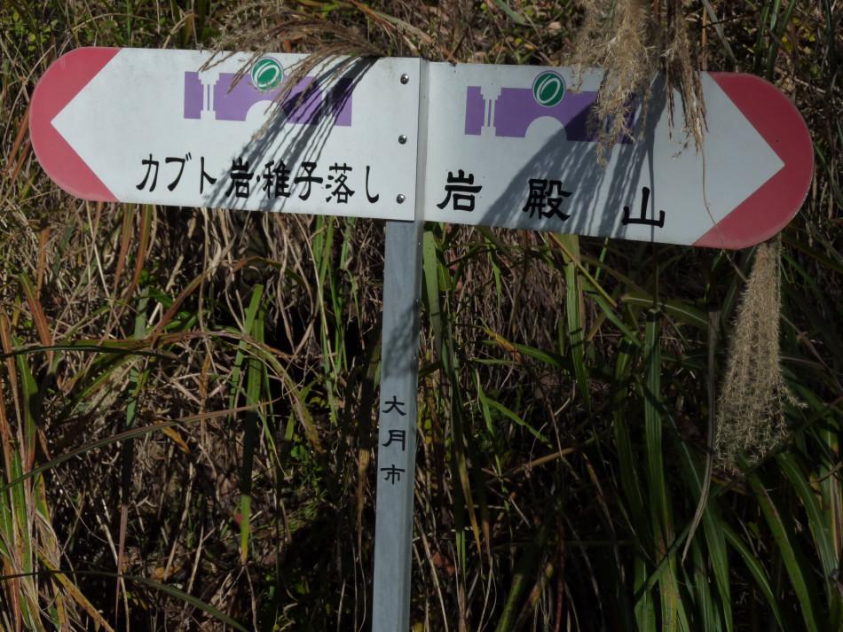 iwadono-191.jpg