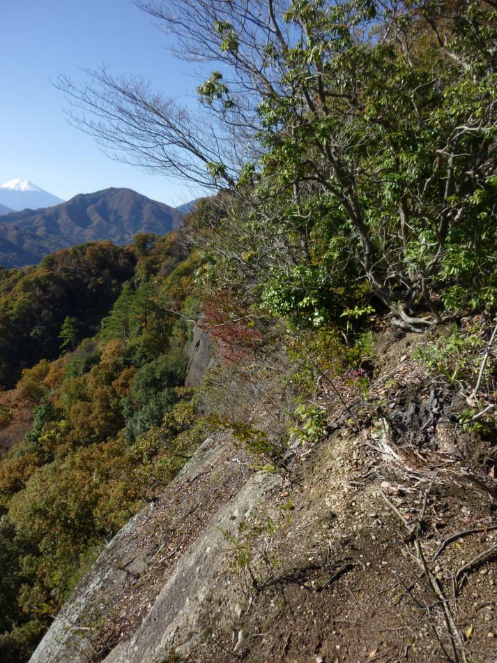 iwadono-213.jpg