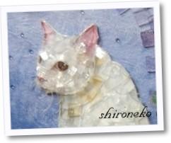 shironeko