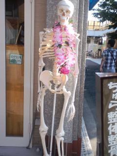 骸骨20100816小
