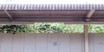 三国ヶ丘20100911 01小