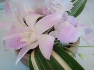 プレゼントのお花20100927_320